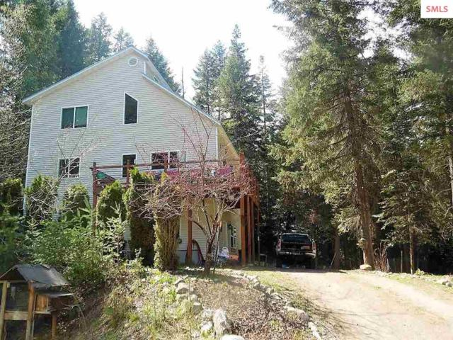 60 Old Thama Ferry Rd, Priest River, ID 83856 (#20191357) :: Northwest Professional Real Estate