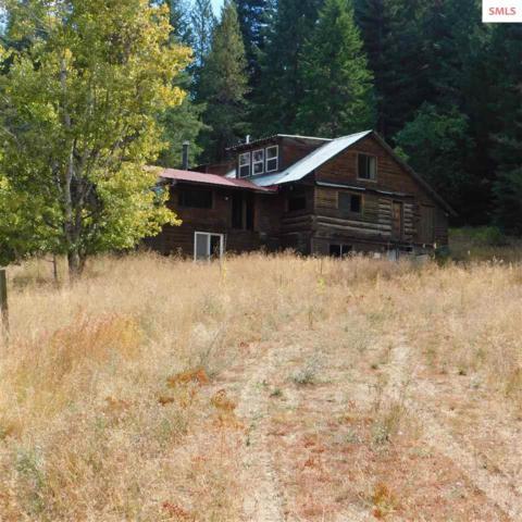 756 Saddle Mountain Dr, Newport, WA 99156 (#20191383) :: Northwest Professional Real Estate