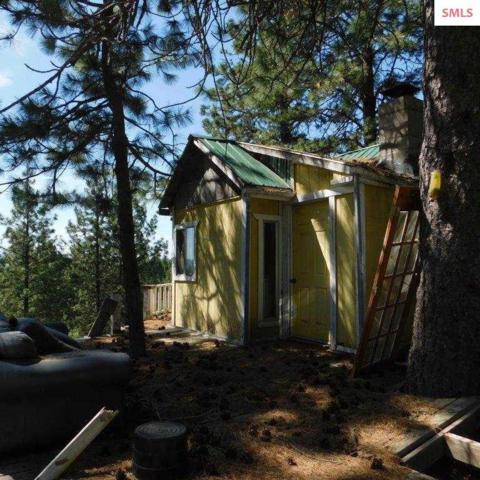6437 Coyote Trail Rd, Newport, WA 99156 (#20191565) :: Northwest Professional Real Estate