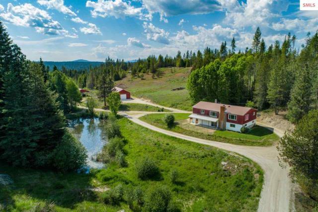 641 Buckeye Ln, Newport, WA 99156 (#20191603) :: Northwest Professional Real Estate