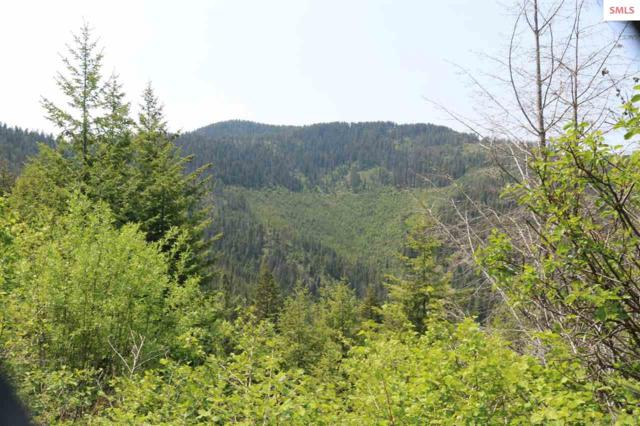 16a Lakeview Cutoff Rd, Lakeview, ID 83803 (#20191714) :: Northwest Professional Real Estate