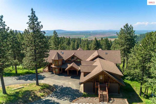 1050 Greenview Ln, Moscow, ID 83843 (#20191785) :: Northwest Professional Real Estate