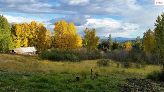 2710 Hoo Doo Mountain, Priest River, ID 83856 (#20191840) :: Northwest Professional Real Estate