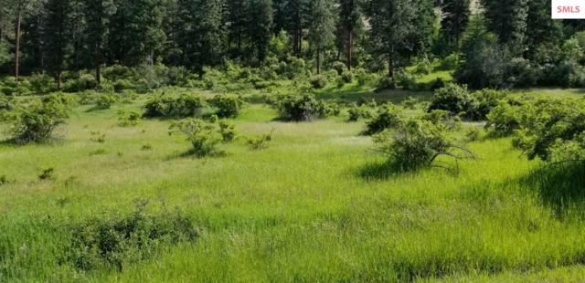NNA Blue Slide Road, Thompson Falls, MT 59873 (#20191877) :: Northwest Professional Real Estate