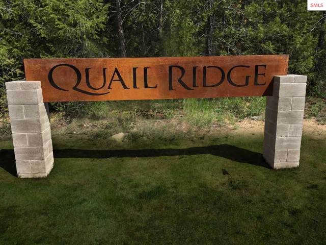 Blk 2 Lot 3 Songbird Way, Spirit Lake, ID 83869 (#20192018) :: Northwest Professional Real Estate