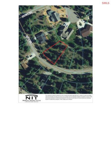 BLK7 LT10 Stewart Dr, Blanchard, ID 83804 (#20192094) :: Northwest Professional Real Estate