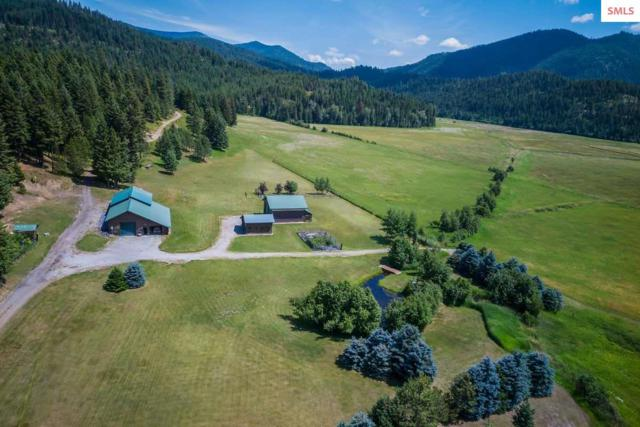487 Fox Creek Spur, Priest River, ID 83856 (#20192144) :: Mall Realty Group