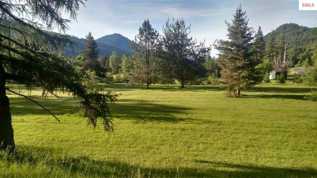 Lot 2 882 Lower Pack River Rd, Sandpoint, ID 83864 (#20192157) :: Northwest Professional Real Estate