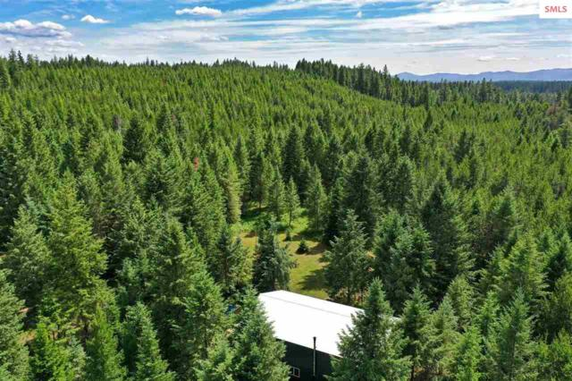 5294 Bandy Road, Priest River, ID 83856 (#20192170) :: Northwest Professional Real Estate
