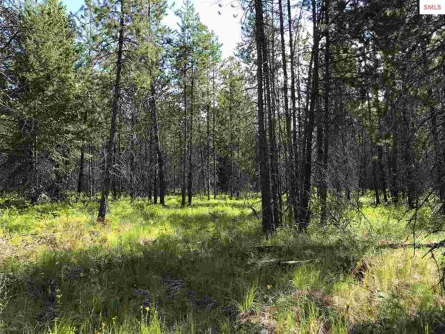 Blk 2 Lot 3A Barn Owl Dr., Spirit Lake, ID 83869 (#20192263) :: Northwest Professional Real Estate