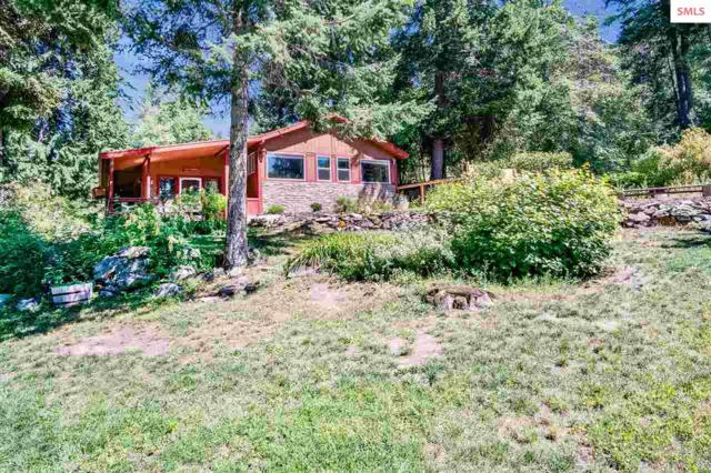 764 Eagen Mountain, Hope, ID 83836 (#20192486) :: Northwest Professional Real Estate
