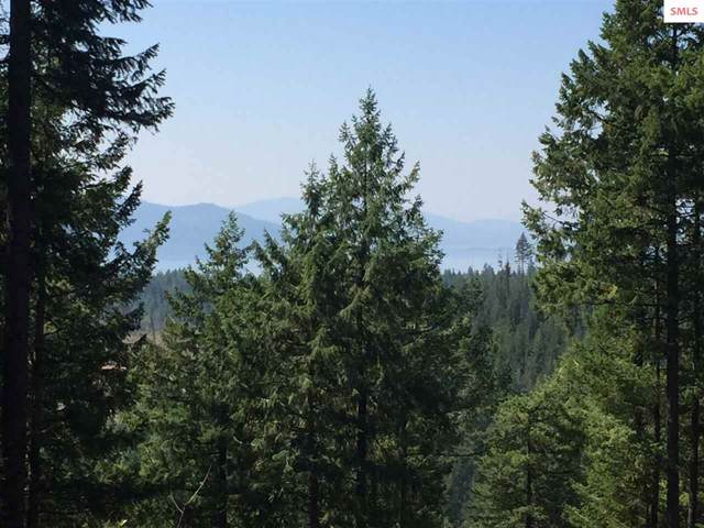 naa Trappers Loop, Sandpoint, ID 83864 (#20192580) :: Northwest Professional Real Estate