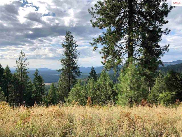 Parcel 11 Hidden Valley Road, Spirit Lake, ID 83869 (#20192613) :: Mall Realty Group