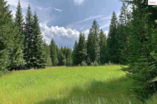 NNA Shadow Valley Lane, Clark Fork, ID 83811 (#20192643) :: Northwest Professional Real Estate
