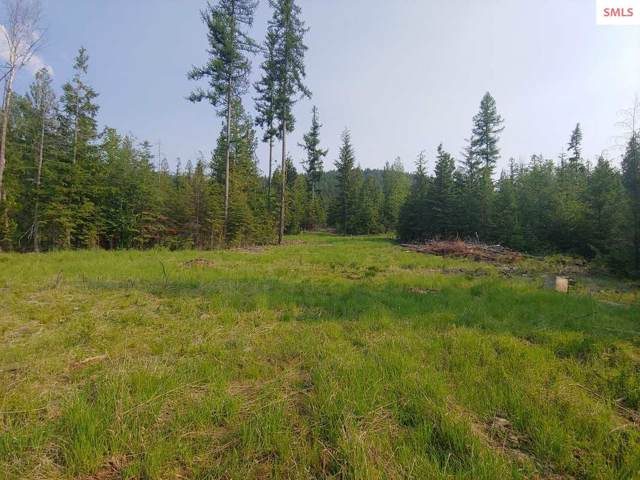 NNA Log Cabin Rd., Bonners Ferry, ID 83805 (#20192686) :: Mall Realty Group