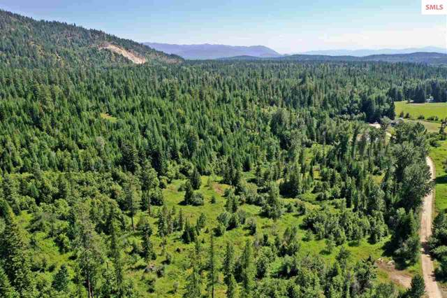 NKA Bearwood Lane, Sandpoint, ID 83864 (#20192712) :: Northwest Professional Real Estate
