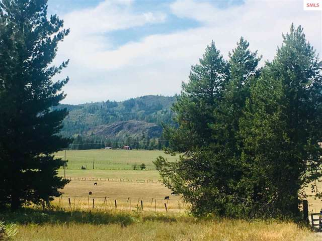 10143 Eastside Rd, Priest River, ID 83856 (#20192913) :: Northwest Professional Real Estate