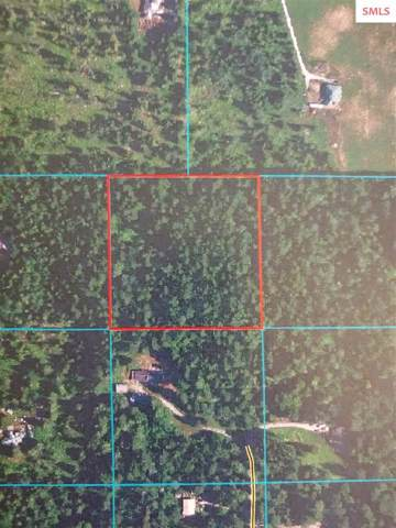 Forty Acres Rd, Sandpoint, ID 83864 (#20192948) :: Northwest Professional Real Estate