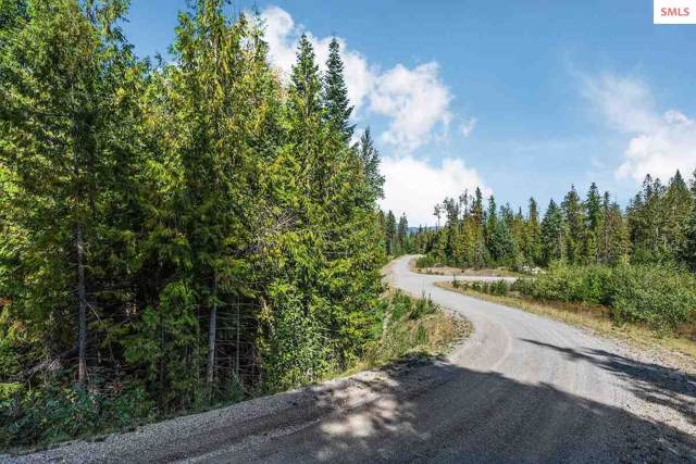 Lot 1 Elicia Lane, Priest River, ID 83856 (#20192954) :: Northwest Professional Real Estate