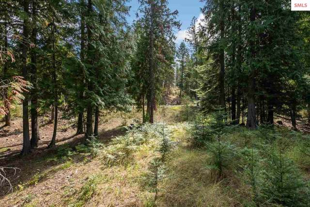 NNA White Cloud Drive C33, Sandpoint, ID 83864 (#20193040) :: Mall Realty Group