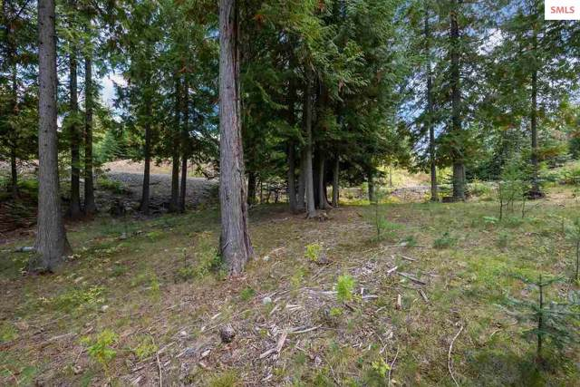 NNA Trappers Loop C19, Sandpoint, ID 83864 (#20193042) :: Mall Realty Group
