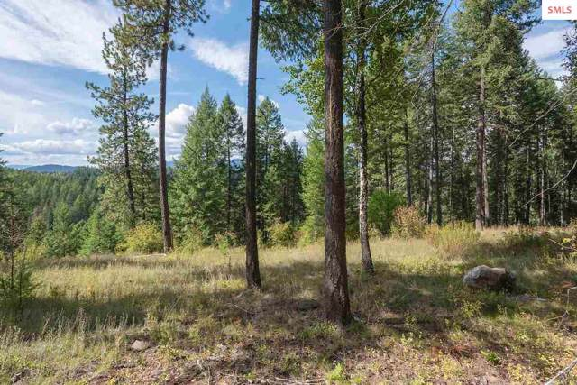NNA S Idaho Club Drive D1, Sandpoint, ID 83864 (#20193043) :: Mall Realty Group