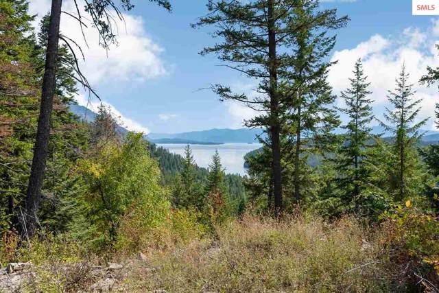 NNA S White Cloud Drive D12, Sandpoint, ID 83864 (#20193044) :: Mall Realty Group