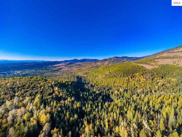 NKA Cross Mountain, Sandpoint, ID 83864 (#20193235) :: Mall Realty Group
