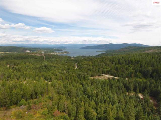 NAA Delaney Drive, Sagle, ID 83860 (#20193292) :: Northwest Professional Real Estate