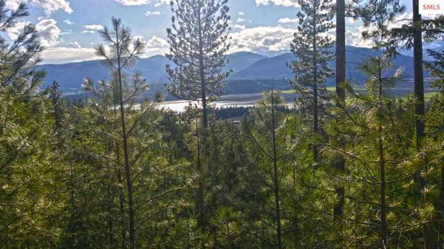 NKA Longview Rd, Bonners Ferry, ID 83805 (#20193304) :: Mall Realty Group