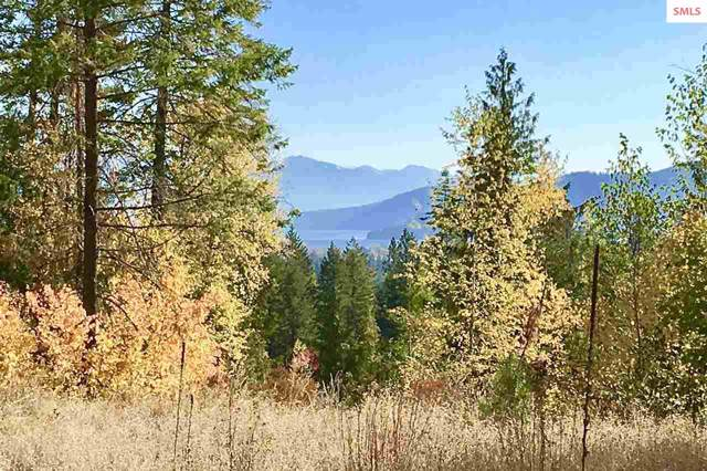 44 Mariposa Ct, Sandpoint, ID 83864 (#20193310) :: Mall Realty Group