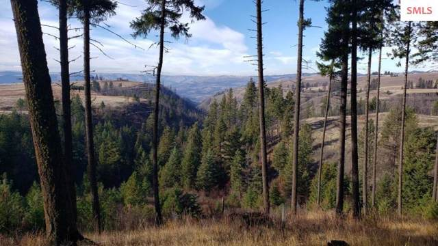 NKA Beaverslide Rd., Out of Area, ID 83536 (#20193474) :: Northwest Professional Real Estate