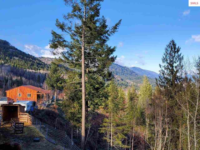 241 Castle Lane, Bonners Ferry, ID 83805 (#20193531) :: Northwest Professional Real Estate