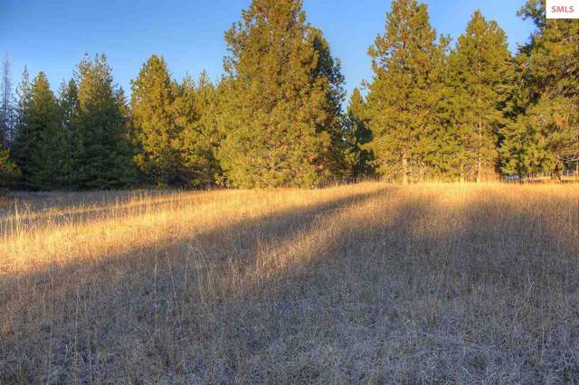 8675 Sagle, Sagle, ID 83860 (#20193536) :: Northwest Professional Real Estate