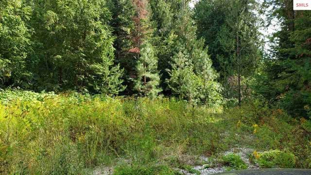 NKN Devils Drive, Cusick, WA 99119 (#20200302) :: Northwest Professional Real Estate