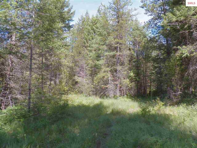 NNA Lions, Priest River, ID 83856 (#20200346) :: Northwest Professional Real Estate