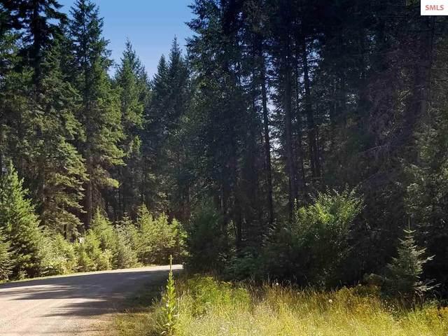 Lot 21 Bear Claw Rd, Clark Fork, ID 83811 (#20200383) :: Mall Realty Group