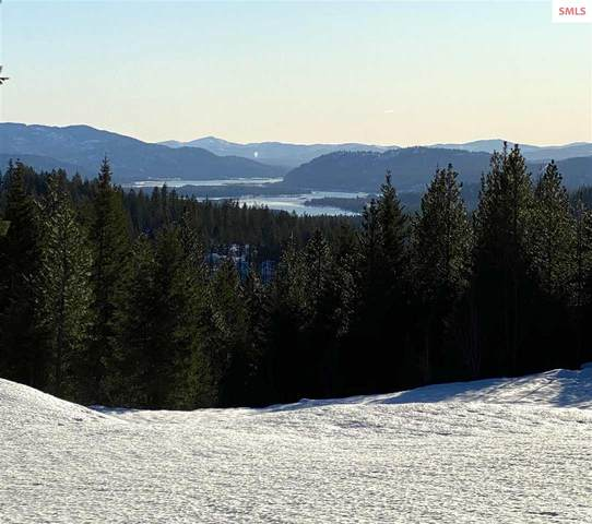 131 Justice Court, Sandpoint, ID 83864 (#20200394) :: Northwest Professional Real Estate