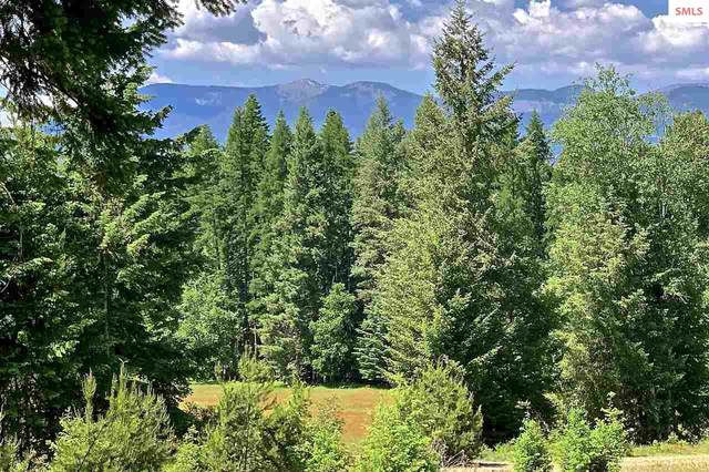 Lot 3 Ashley Way, Sagle, ID 83860 (#20200744) :: Mall Realty Group