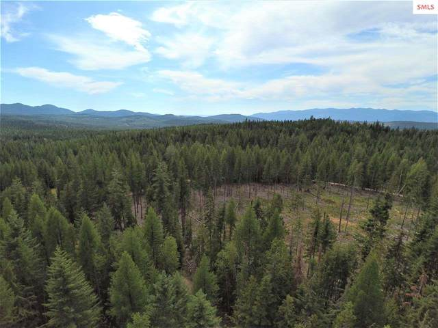 NNA Box Canyon Road (Lot B), Sandpoint, ID 83864 (#20200749) :: Mall Realty Group