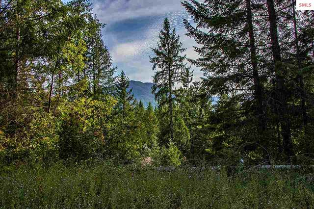Lot 5 Block 2 Bear Claw Road, Clark Fork, ID 83811 (#20200763) :: Mall Realty Group