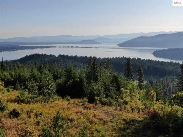 1025 Mountain Ridge Dr, Sagle, ID 83960 (#20201044) :: Northwest Professional Real Estate