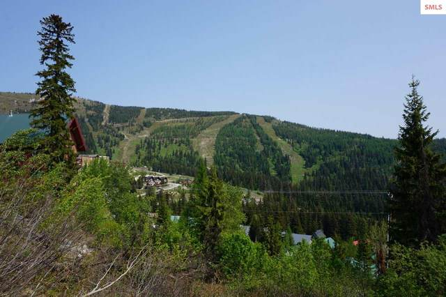 NNA Parallel Run, Sandpoint, ID 83864 (#20201348) :: Mall Realty Group