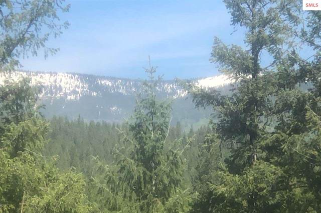 Lot 9 Rock Dome Road, Sandpoint, ID 83864 (#20201392) :: Mall Realty Group