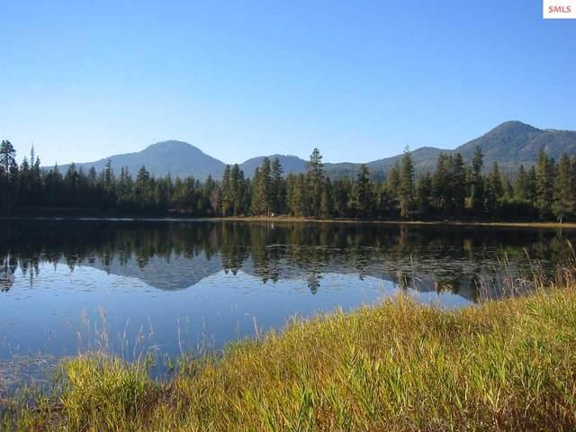 159 Muskrat Lake Road, Sagle, ID 83860 (#20201427) :: Northwest Professional Real Estate