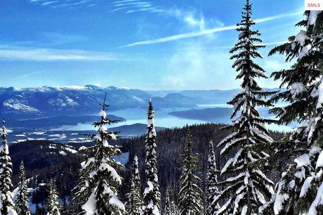 130 Tall Timber Road, Sandpoint, ID 83864 (#20201440) :: Northwest Professional Real Estate