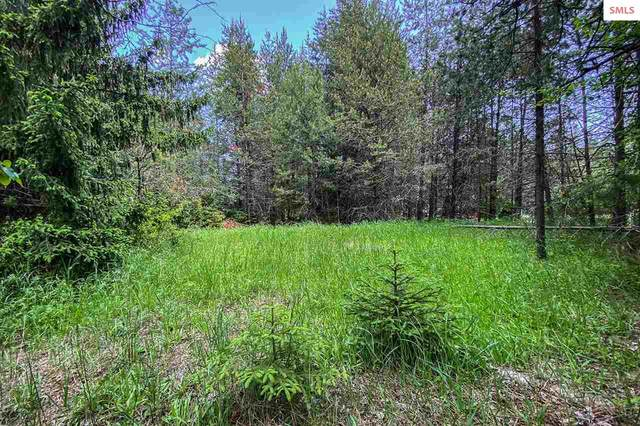 Lot 15 Shadow Mountain Road, Sandpoint, ID 83864 (#20201536) :: Mall Realty Group