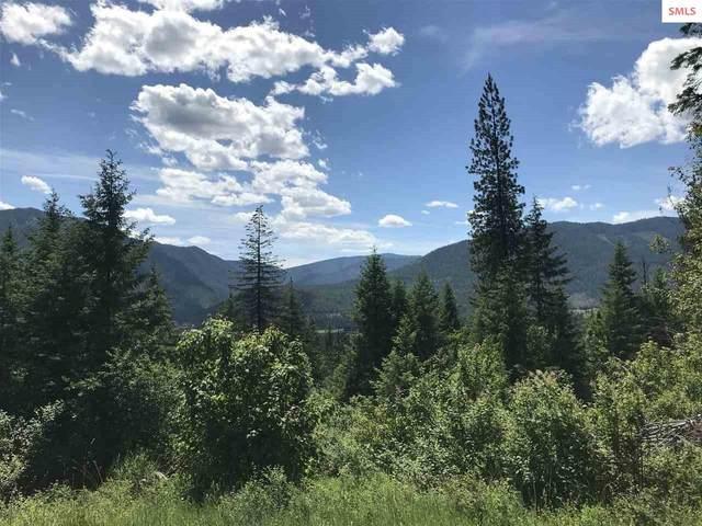 NNA Bear Claw, Clark Fork, ID 83811 (#20201769) :: Northwest Professional Real Estate