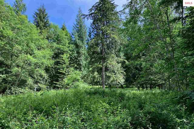 B1L3 S Idaho Club Dr, Sandpoint, ID 83864 (#20201803) :: Northwest Professional Real Estate