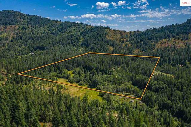 1301 Gold Cup Mountain Rd., Priest River, ID 83856 (#20201832) :: Northwest Professional Real Estate
